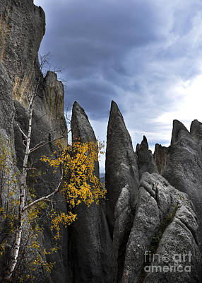 Photograph - Rock Spires In The Black Hills by Jill Battaglia