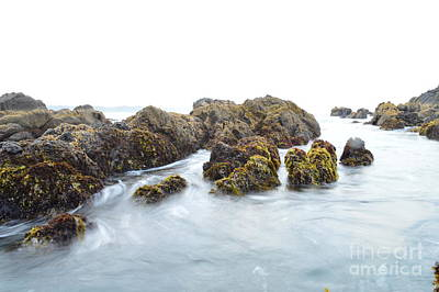 Photograph - Rock The Seascape by Sheldon Blackwell
