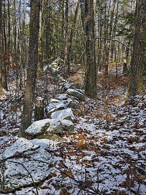 Photograph - Rock Wall - Maine by Steven Ralser