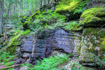 Photograph - Rock Wall Trail Of The Cedars Glacier National Park Painted by Rich Franco
