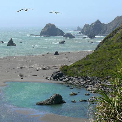 Gull Photograph - Rock West Coast by Mike McGlothlen