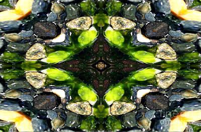 Photograph - Rocks And Kelp Mandala by Marie Jamieson