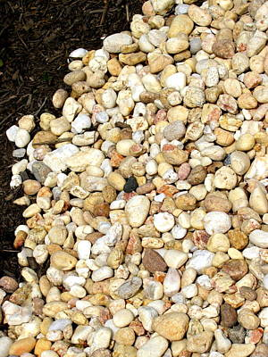 Photograph - Rocks And Mulch by Deborah  Crew-Johnson