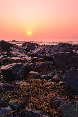 Photograph - Rocks And Seaweed Sunrise On The Nh Seacoast by Jeff Sinon