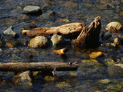 Photograph - Rocks And  Wood And Water by Jacqueline  DiAnne Wasson