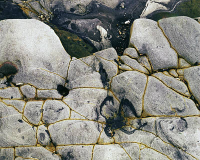 Photograph - Rocks At Point Lobos C2014 by Paul Ashby