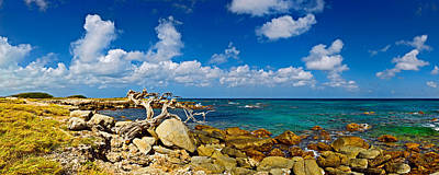Lesser Photograph - Rocks At The Coast, Aruba by Panoramic Images