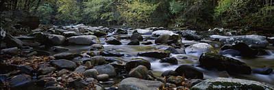 Flat Rock Photograph - Rocks In A River, Great Smoky Mountains by Panoramic Images