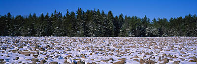 Rocks In Snow Covered Landscape Art Print by Panoramic Images