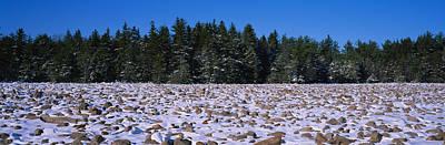 Rocks In Snow Covered Landscape Art Print