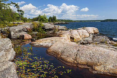 Lilies Royalty-Free and Rights-Managed Images - Rocks on Georgian Bay shore by Elena Elisseeva