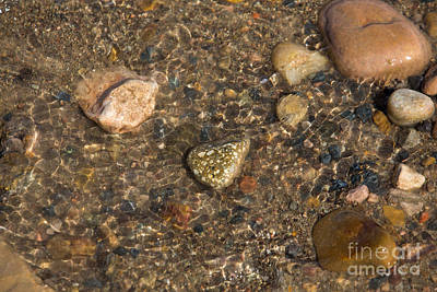 Photograph - Rocks On The Shore by Shawn Naranjo