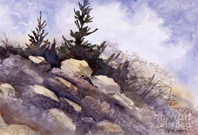 Rocks Art Print by Teresa Ascone