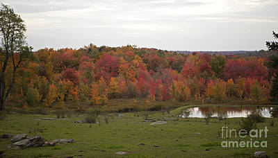 Photograph - Rocky Autumn Pasture Pond Flaming Foliage by John Stephens