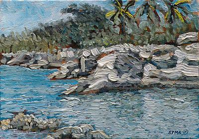 Rocky Bluff Art Print
