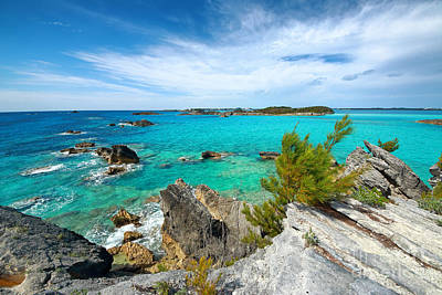 Photograph - Rocky Coast Of Bermuda by Charline Xia