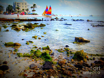 Photograph - Rocky Cove Siesta Beach by Lou Ann Bagnall