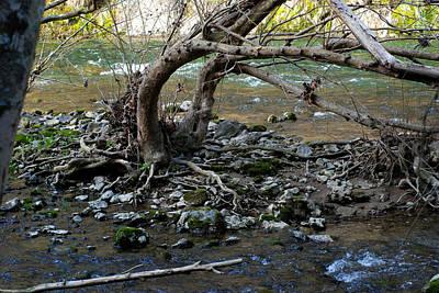 Photograph - Rocky Fork Spring 03 by Carol Kay