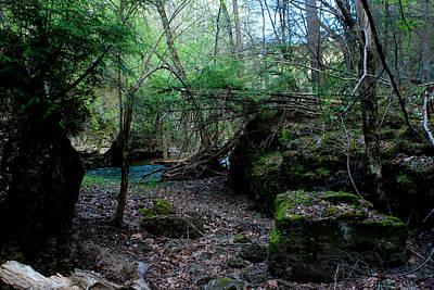 - Rocky Fork Spring 06 by Carol Kay