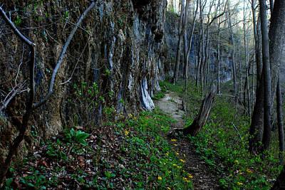 - Rocky Fork Spring 09 by Carol Kay