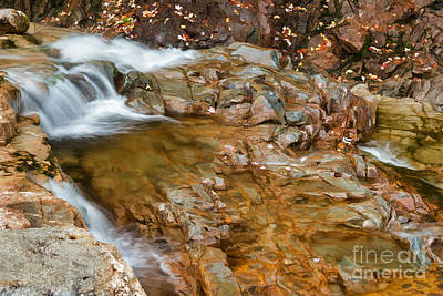 Photograph - Rocky Gorge II by Sharon Seaward