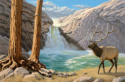Elk Painting - Rocky Mountain Elk by Paul Krapf