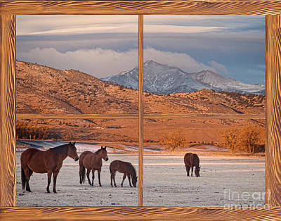 Photograph - Rocky Mountain Horses Picture Window Frame Photo Art View by James BO Insogna