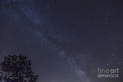 Photograph - Rocky Mountain Milky Way by D Wallace