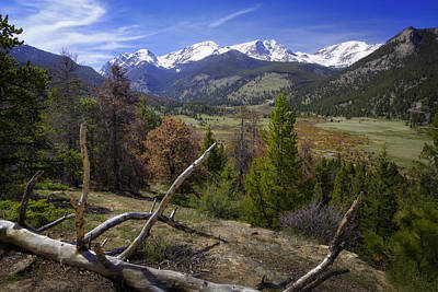 Target Threshold Nature - Rocky Mountain National Park by Joan Carroll