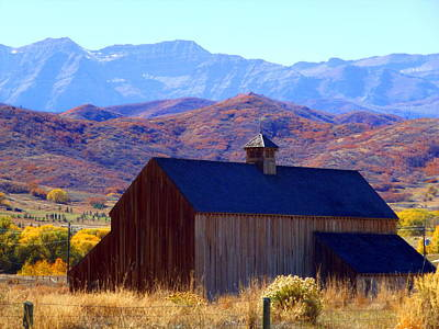 Art Print featuring the photograph Rocky Mountain Retreat by Jackie Carpenter