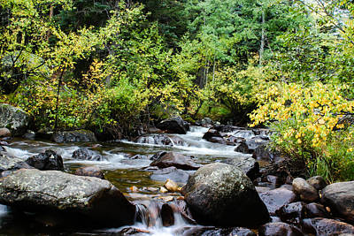 Art Print featuring the photograph Rocky Mountain Stream by Jay Stockhaus