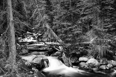 Photograph - Rocky Mountain Stream Scenic Landscape Bw by James BO Insogna