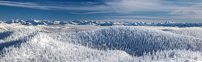 Art Print featuring the photograph Rocky Mountain Winter by Aaron Aldrich