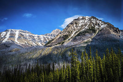 Print featuring the photograph Rocky Mountains Kootenay National Park by Rob Tullis