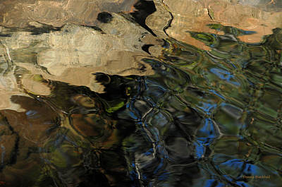 Photograph - Rocky Ripples by Donna Blackhall