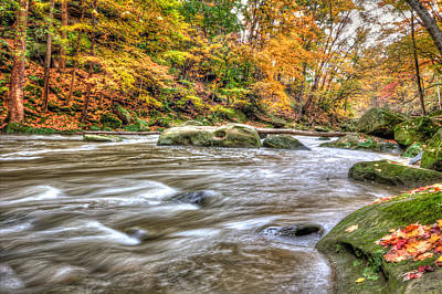 Rocky River Art Print by Brent Durken