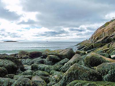 Photograph - Rocky Sand Beach by Gene Cyr