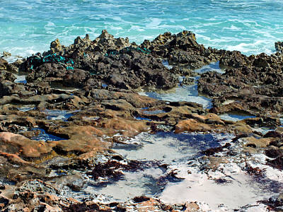 Photograph - Rocky Shore Abstract Texture 2 by Duane McCullough