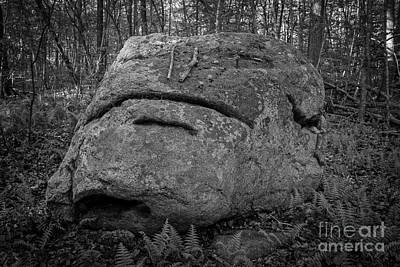 Photograph - Rocky The Boulder Westbrook Connecticut by Edward Fielding