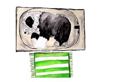 Mixed Media - Rocky The Tub Sleeper by Cathy Howard