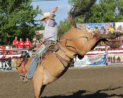 Photograph - Rodeo by Bruce  Morrell