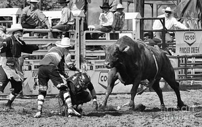 Standoff Wall Art - Photograph - Rodeo Mexican Standoff by Bob Christopher