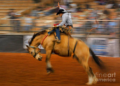Photograph - Rodeo by Novastock
