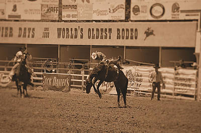 Rodeo  Art Print by Stormys Unique   Creations