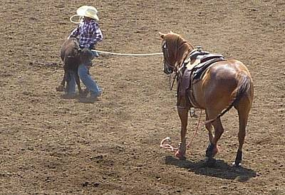 Photograph - Rodeo Time Calf Roping  2 by Susan Garren