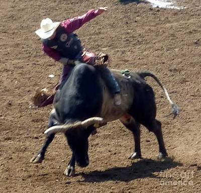 Photograph - Rodeo Time Cowboy Hanging On Bull by Susan Garren