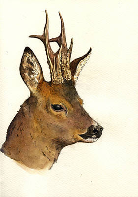 Deer Painting - Roe Deer Head Study by Juan  Bosco