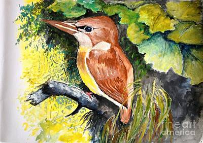 Mangrove Forest Painting - Rofous - Backed Kingfisher  by Jason Sentuf