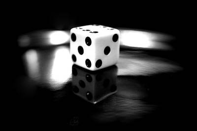Photograph - Roll Of The Dice by Laurie Perry