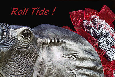Roll Tide - 14 Time National Champions Art Print by Kathy Clark